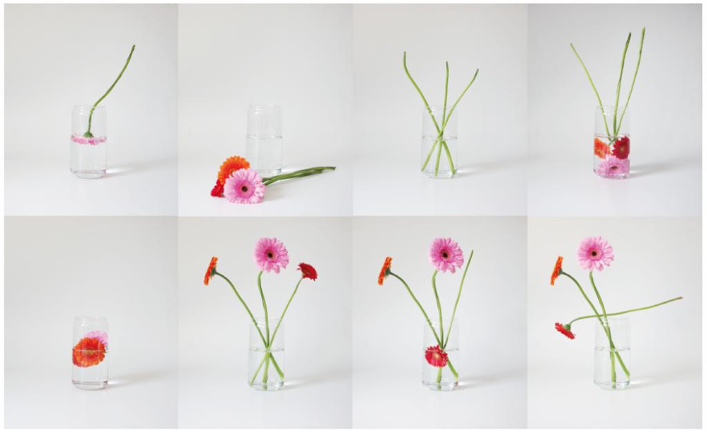 Blumen in Vase. Fotos: Valerie Rehle